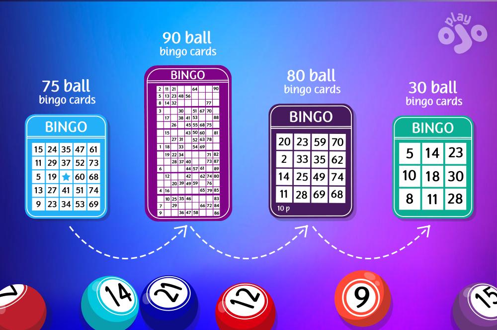 Evolusi Bingo